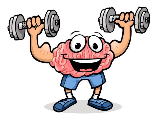 brain-exercise-clip-art-1651677